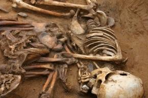 Ученые обнаружили в Сибири загадочное древнее захоронение