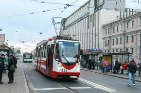 В Петербурге трамвай сбил насмерть пенсионера