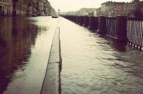 Ученые: через 100 лет Петербург может оказаться под водой