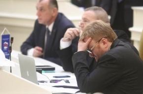 Милонов предлагает Госдуме бороться с виртуальными педофилами