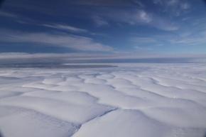 В Антарктиде аварийно сел вертолет с учеными, изучавшими пингвинов