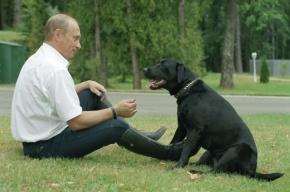 Газета Times назвала Путина человеком года