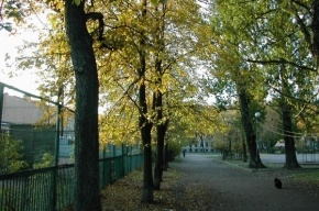 В Петербурге после капремонта открыт Сад имени Чернышевского