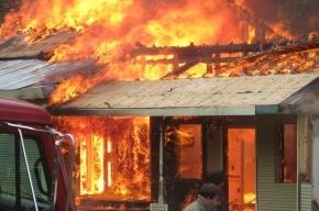 В Репино неизвестные подожгли ресторан «Сказка»