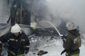 В Томске в сгоревшем инкубаторе птицефабрики найдены два тела