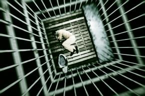 Петербуржец провел пять суток в изоляторе за неоплаченный штраф ГИБДД