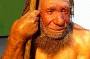 Ученые прочитали древнейшую ДНК человека