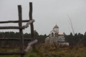 В Ленобласти вынесен приговор преступной группе, пытавшей пенсионера утюгом