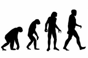 Треть американцев не верят в теорию эволюции жизни
