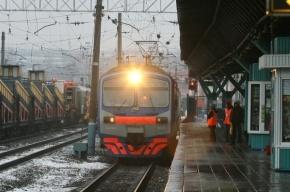 В Москве человек в маске открыл стрельбу в электричке