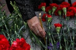Замглавы Петергофа сбит насмерть на пешеходном переходе