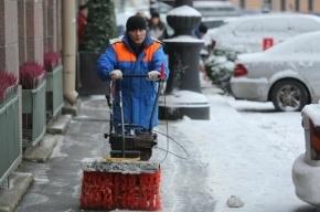 Петербуржцы лучше работают зимой