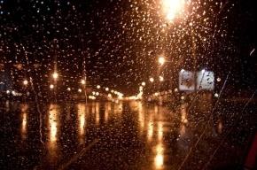Нормальная петербургская погода ждет нас в новогоднюю ночь