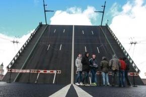 Движение троллейбусов по Дворцовому мосту откроют 8 декабря