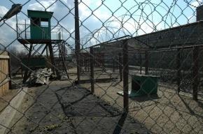 Экс-защитника «Торпедо» приговорили к 6 годам за убийство мигранта