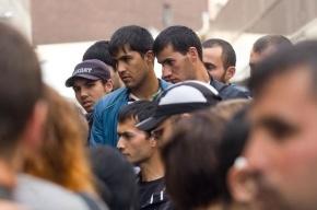 В Подмосковье на подпольной фабрике задержаны 2,5 тысячи мигрантов