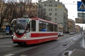 В полицию сообщили об избиении мигранта националистами в трамвае №52