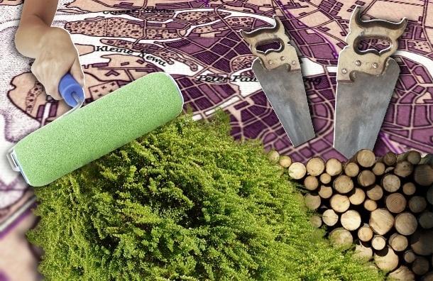 Самые зеленые и самые серые районы Петербурга - рейтинг