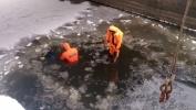 Фоторепортаж: «В Шлиссельбурге микроавтобус упал в канал, шесть человек погибли »