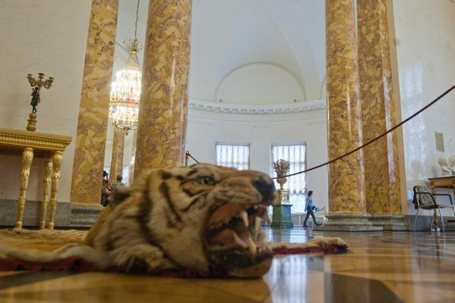 Александровский дворец: Фото