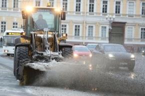 Вице-губернатор признал вину за пересоленные улицы