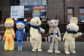 На Олимпиаду в Сочи поедут 19 спортсменов из Петербурга