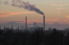 Губернатор отменил строительство мусоросжигательного завода в Горелово