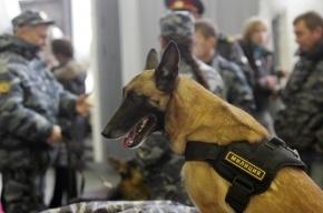 Станцию метро «Улица Дыбенко» закрывали из-за сообщения о бомбе