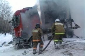 В Пензенской области в ДТП с автобусом погибли шесть человек