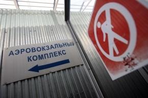 В Шереметьево и Внуково запретили проносить в самолет любые жидкости