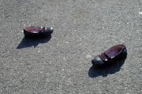 В Ленобласти пропала 11-летняя девочка