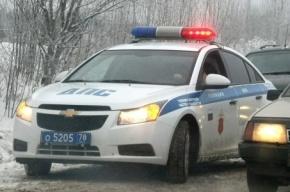 В Петербурге пьяный водитель-приезжий подрался с полицейскими