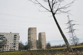 В Москве грабитель пытался сбежать с восьмого этажа по простыням