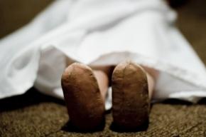 В Петербурге грудной младенец умер от ОРВИ