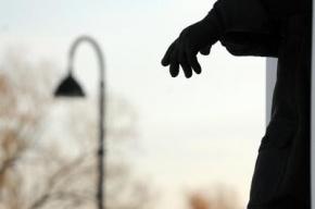 В петербургских парках устанавливают светодиодные фонари