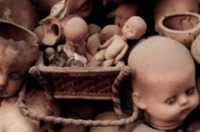 В Тихвине родители проломили трехлетнему сыну голову во время ссоры