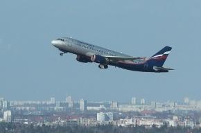 Под Петербургом хулиган пытался ослепить лазером пилотов аэробуса