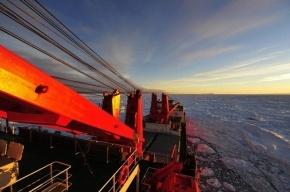 Ледокол КНР, спасавший, «Академика Шокальского», застрял во льдах