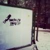 В Петербурге появились граффити, посвященные «распилу» в Сочи: Фоторепортаж