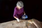 Фоторепортаж: «В Египте найден саркофаг с мумией возрастом 3,6 тысяч лет»