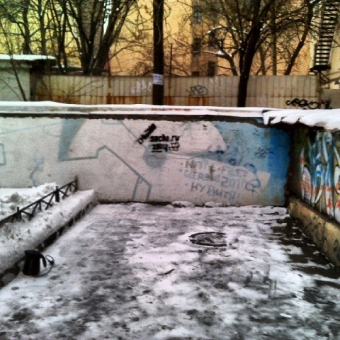 В Петербурге появились граффити, посвященные «распилу» в Сочи: Фото