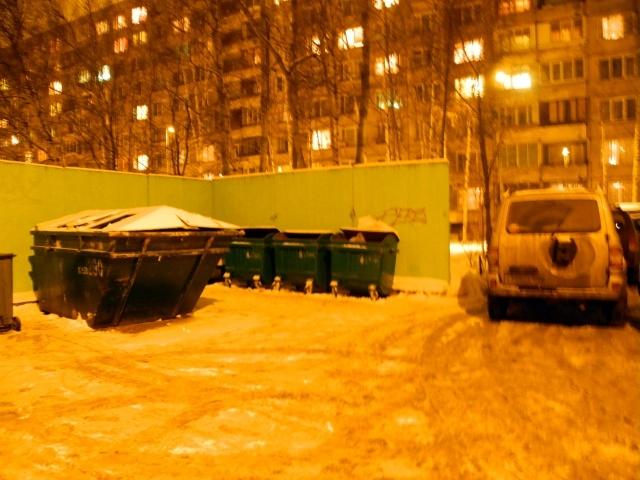 Контейнерная площадка на ул. Софьи Ковалевской: Фото