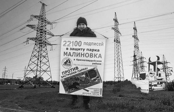 Защитникам «Малиновки» предложили гулять под ЛЭП