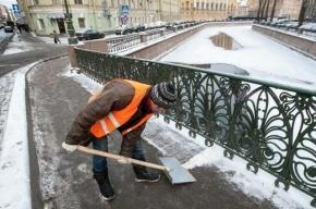 Петербургские депутаты выступили против использования соли на дорогах