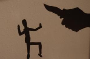 В Ленобласти вступившегося за избитую женщину судят за убийство