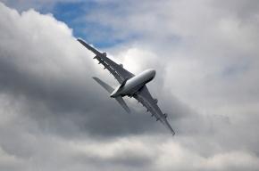 Дебошира из России полицейские сняли с самолета в Доминикане