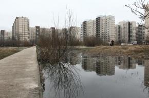 В Приморском районе мать пыталась покончить собой после падения ребенка из окна