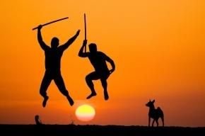 В Подмосковье задержаны двое мигрантов с самурайскими мечами