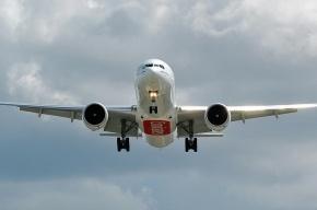 Авиакомпания забыла в Дубае багаж сотен петербуржцев