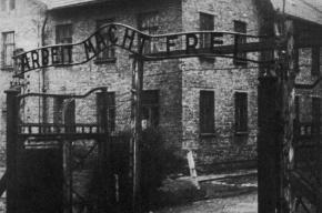 Бывший надзиратель Освенцима не предстанет перед судом из-за слабоумия